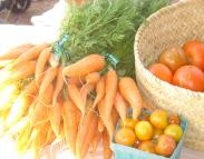 organic, non GMO, carrots, tomatoes
